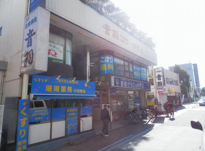 小田原市栄町1-14-41(小田原駅)音羽プラーザビルの賃貸事務所 ...